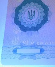 Диплом - свечение УФ (Черновцы)