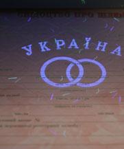 Диплом - микро ворс в УФ (Черновцы)